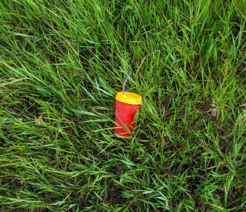 Plast- kopp i gr?set fotografering för bildbyråer