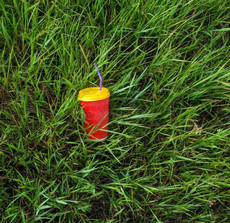 Plast- kopp i gr?set royaltyfri bild