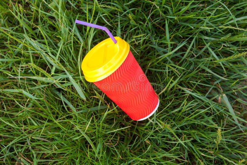 Plast- kopp i gr?set arkivbild