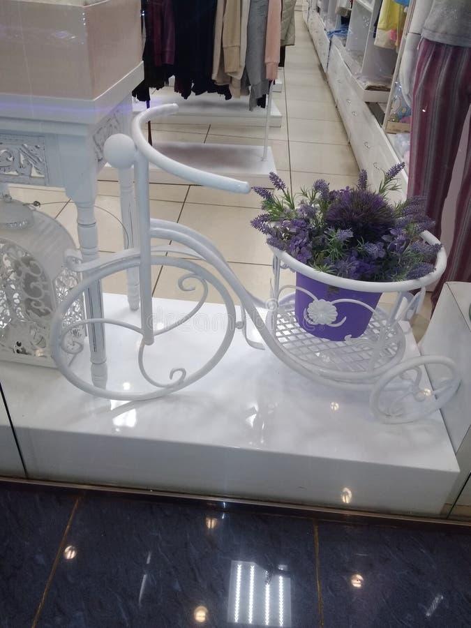 Plast- lavendel royaltyfri foto