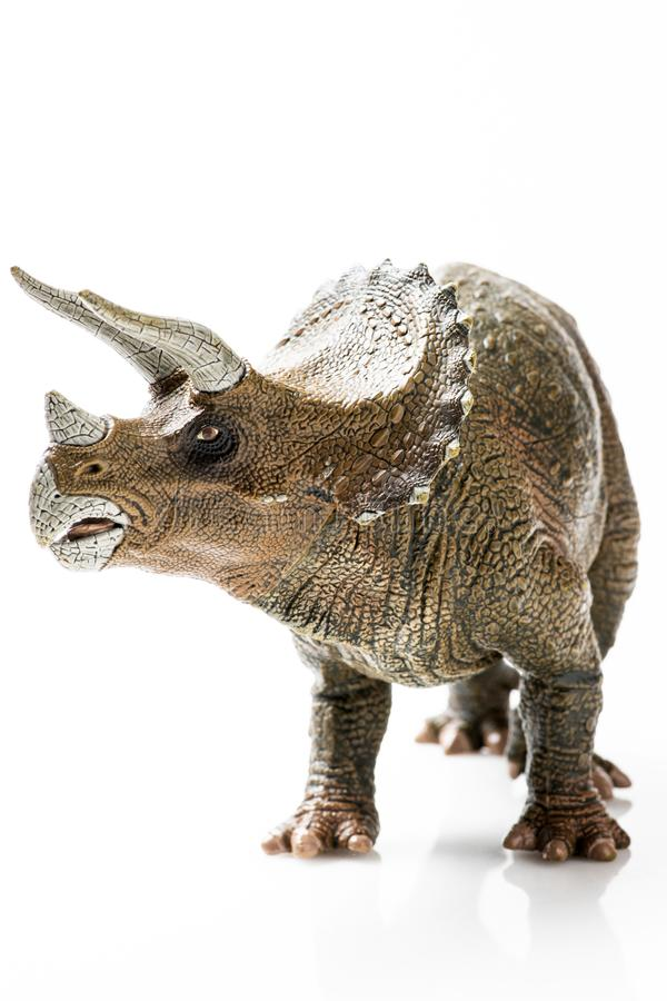 Plast- statyett för Triceratops i vit bakgrund royaltyfria bilder