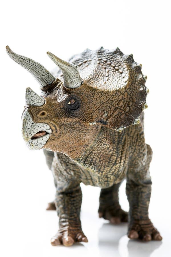 Plast- statyett för Triceratops i vit bakgrund fotografering för bildbyråer
