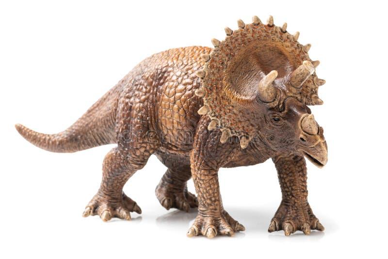 Plast- statyett för Triceratops i vit bakgrund royaltyfria foton