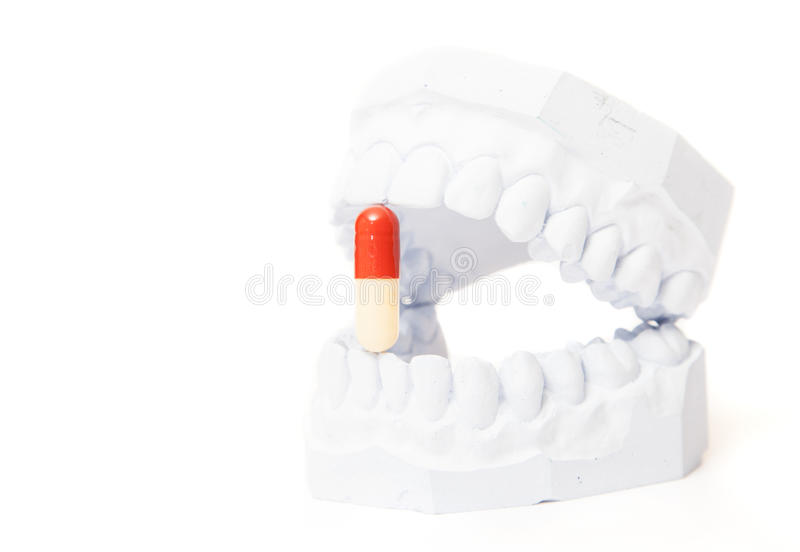 Plaster cast of teeth with single pill. All on white background royalty free stock photography