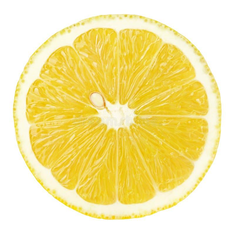 Plasterek cytryna cytrusa owoc odizolowywająca na bielu zdjęcia royalty free