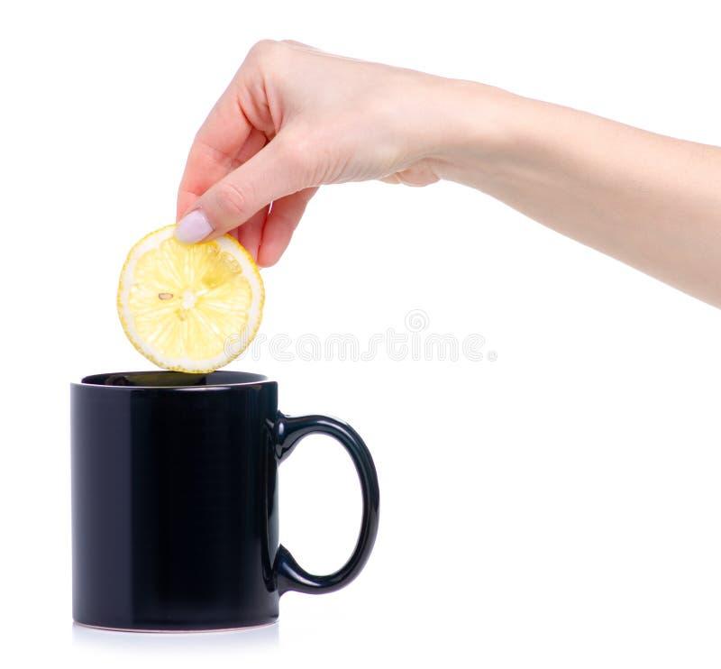 Plasterek cytryna stawiająca w czarnym filiżanka kubku herbata fotografia stock