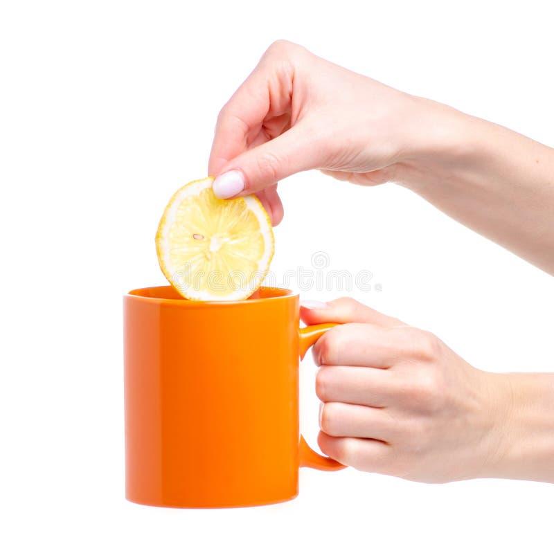 Plasterek cytryna stawiająca w pomarańczowym filiżanka kubku herbata obraz royalty free