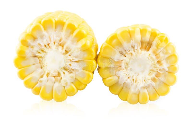 Plasterka dwa ucho kukurudza zdjęcia royalty free