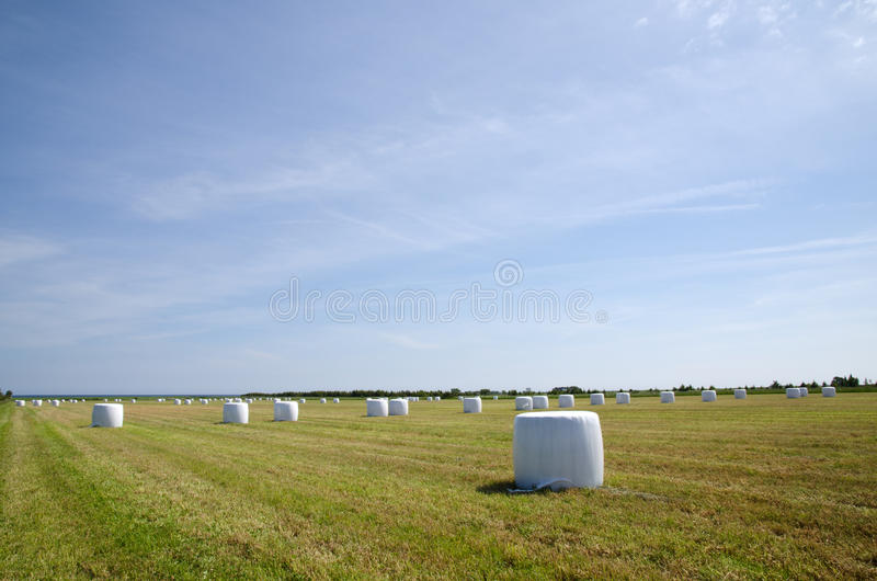Plastic bales royalty free stock photos