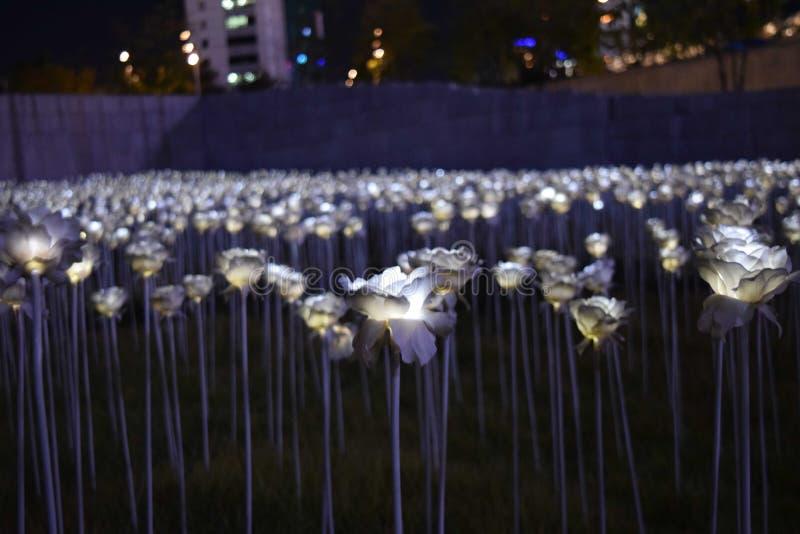 Plastic Bloemen in de Stad stock afbeelding