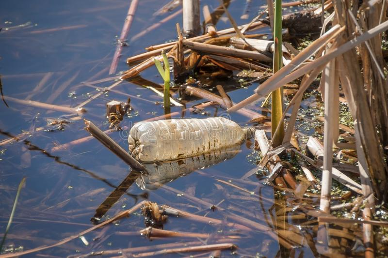 Plastic bottle in lake royalty free stock photography