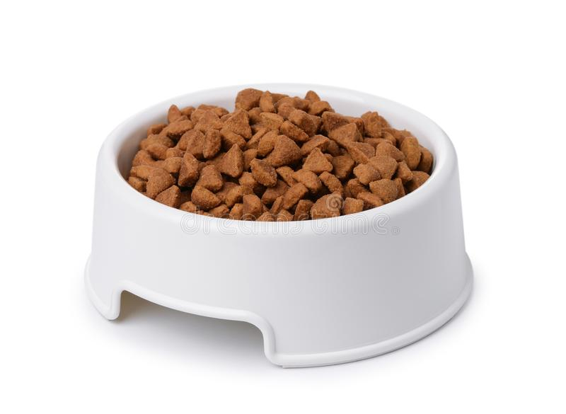 Plastic bowl of dry pet food royalty free stock photography