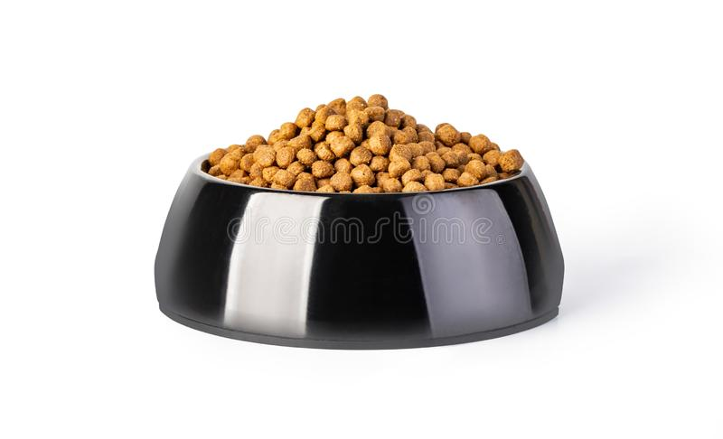 Plastic bowl full with dog food isolated on white stock image