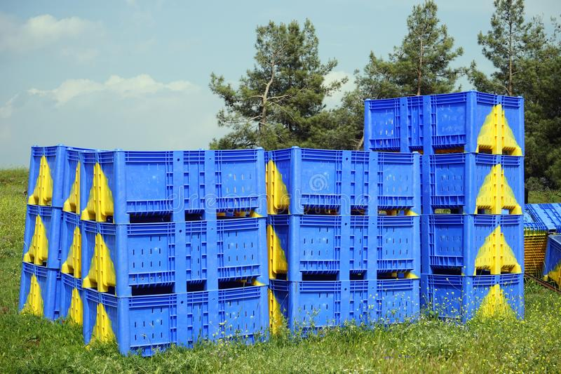 Plastic boxes. Blue plastic boxes near the forest stock photo