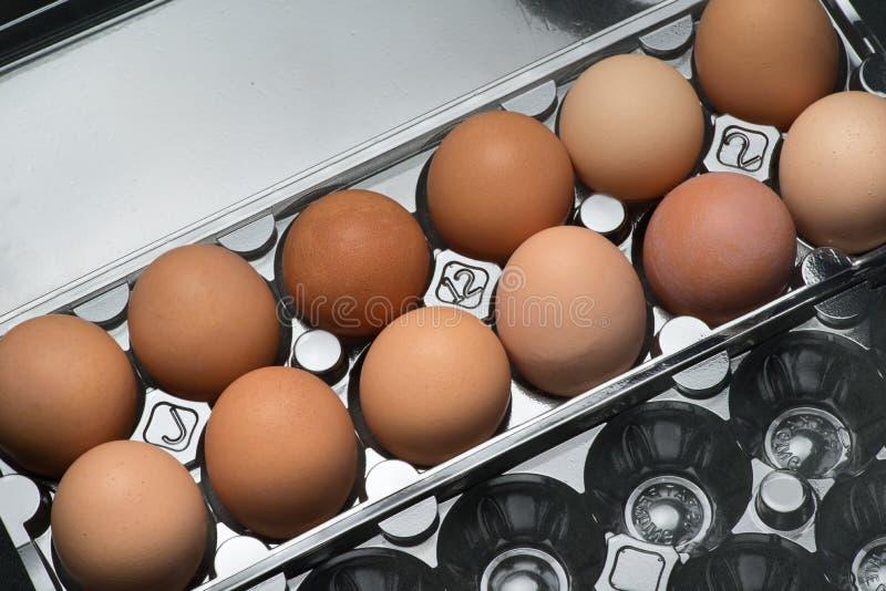 A plastic carton of fresh organic brown free range eggs royalty free stock image