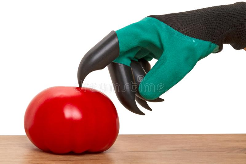 Plastic claw gloves and tomato stock images