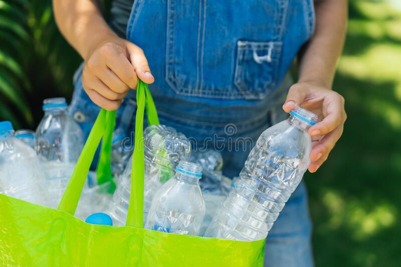 Plastic collection, environmental protection. Woman`s hands collect bottles and put in a green royalty free stock photo