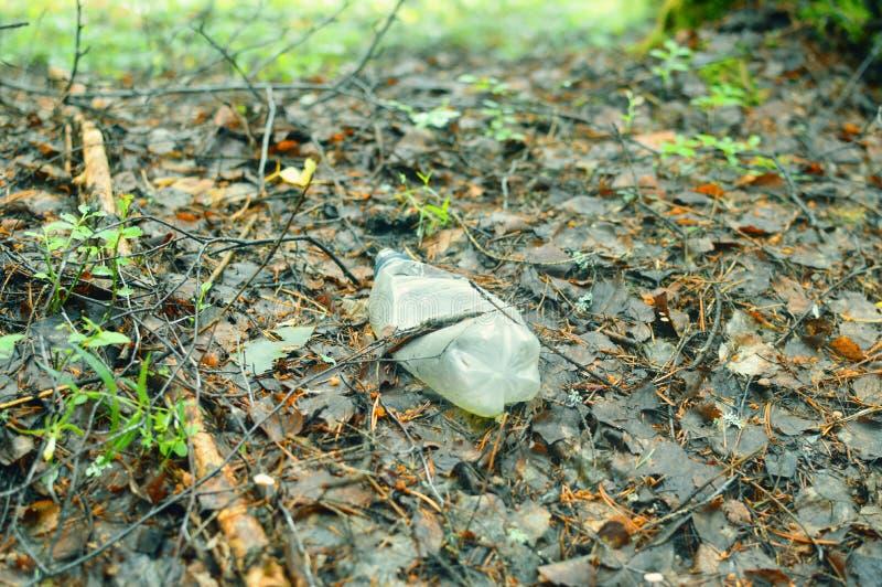 Plastic fles in het bos ter plaatse stock foto