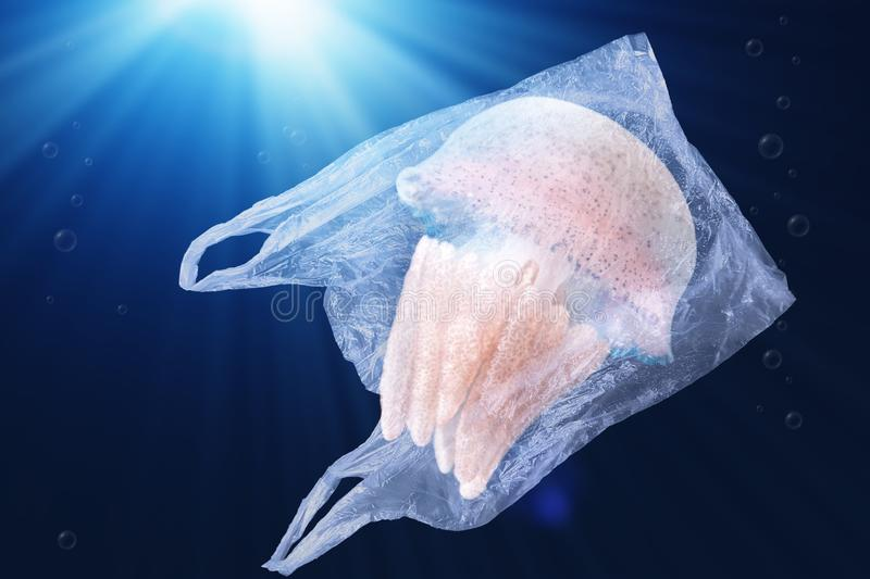 Plastic pollution in ocean environmental problem concept.  jellyfish swim inside plastic bag floating in the ocean. stock photo