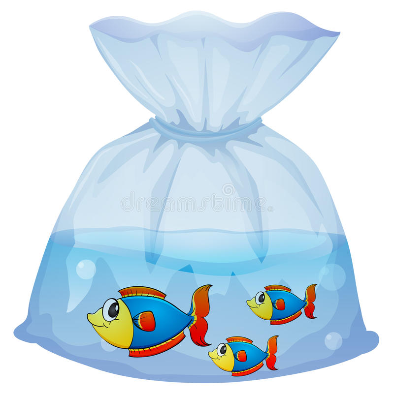 A plastic pouch with three fishes vector illustration