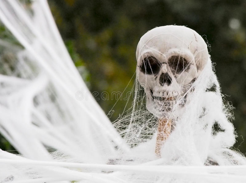 Plastic Skeleton Covered in Fake Web for Halloween Decoration royalty free stock photo
