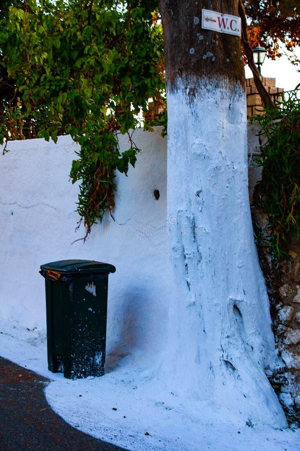 Plastic vuilnisbak op de straat naast het hout Gekleurde boom in de witte kleur royalty-vrije stock foto