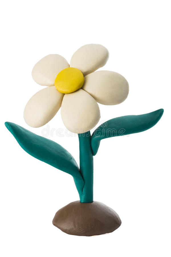 Plasticine white flower with leaves growing on the ground royalty free stock image