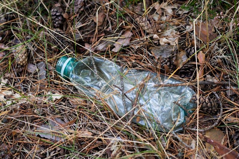 Plastikabfall im Wald verstaute Natur Plastikbehälter LY stockbilder