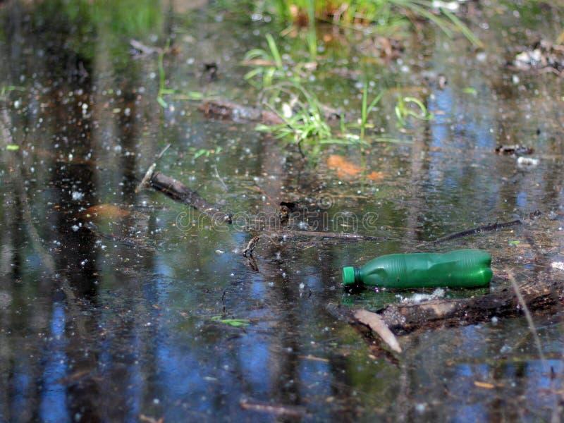 Plastikflasche in einem Teich lizenzfreie stockfotos
