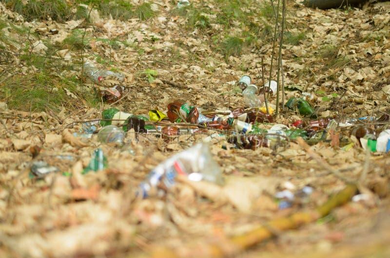 Plastikflaschen verderben und verunreinigen den ökologischen Naturzustand lizenzfreies stockfoto