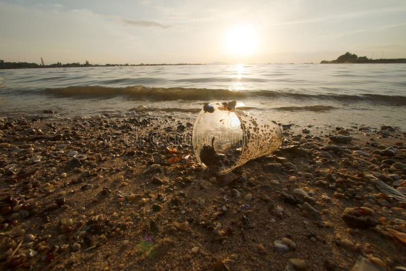 Plastikowa filiżanka na plaży plaży i oceanu zanieczyszczeniu fotografia stock