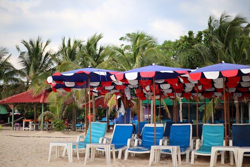 Plastikowe poduszki, kokosowi drzewa i piękny tło, zdjęcie royalty free