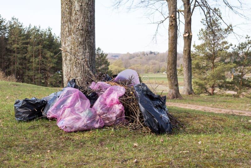 Plastikowi torba na śmiecie w parku, wiosny cleaning fotografia stock