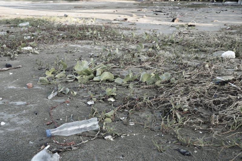 Plastikowy bidonu zanieczyszczenie w oceanu ?rodowiska poj?ciu Plastikowa butelka na pla?y Klingeryt zabija nasz morskie istoty zdjęcie royalty free