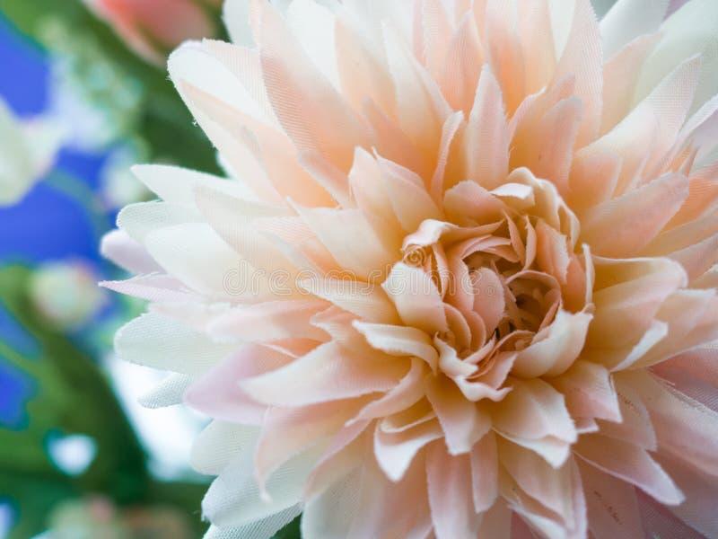 Plastikowy kwiat obraz royalty free