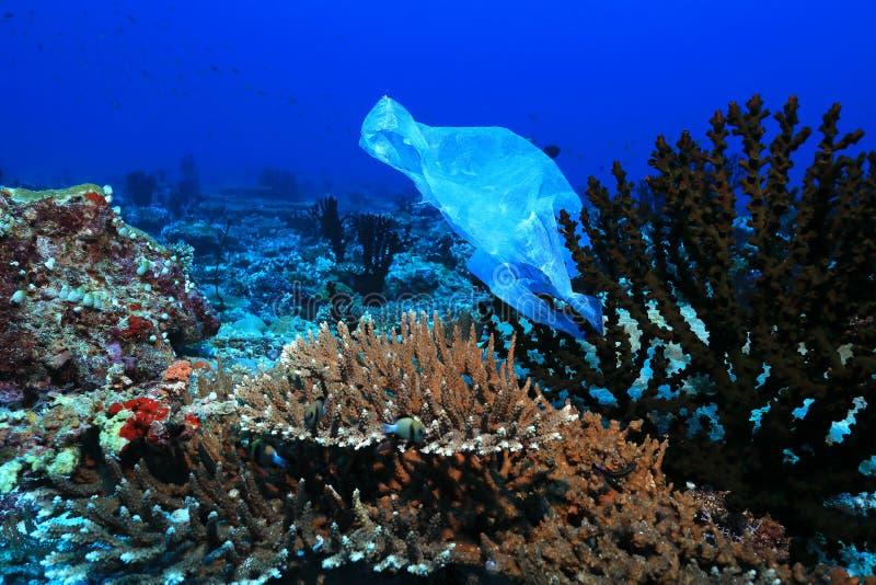 Plastiktasche auf Korallen lizenzfreie stockbilder