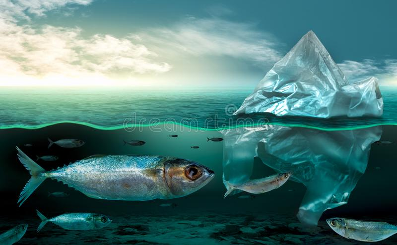 Plastikverschmutzung in Marineumweltprobleme Tieren im Meer kann nicht leben Und verursachen Sie Plastikverschmutzung im Ozean lizenzfreie stockfotografie