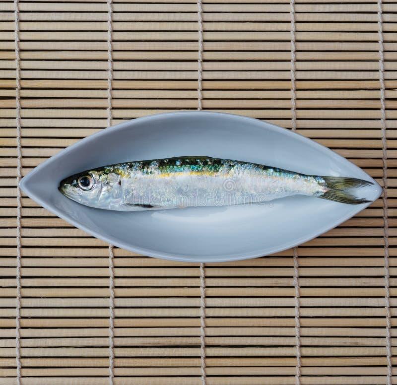 Plat blanc avec une sardine photos stock