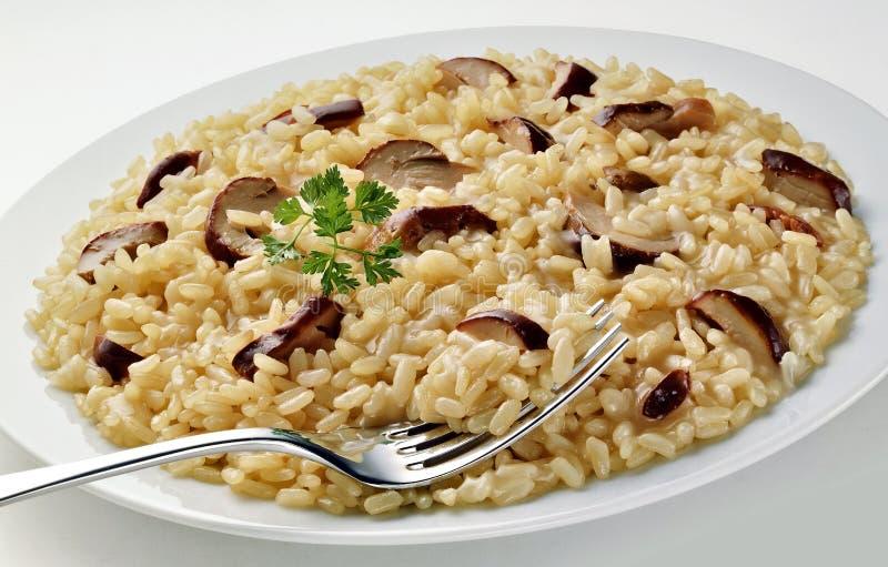 Plat de risotto de champignon avec la fourchette photographie stock
