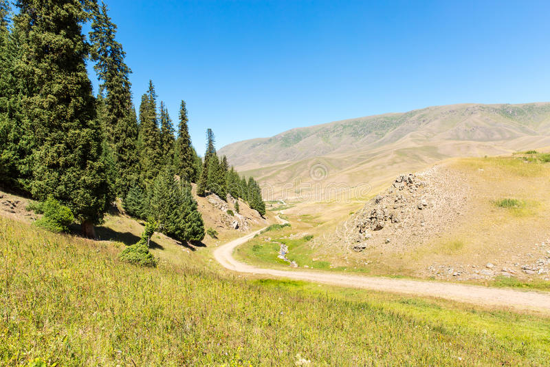 Platô do Assy na montanha de Tien Shan em Almaty, Cazaquistão, Ásia no verão imagem de stock royalty free