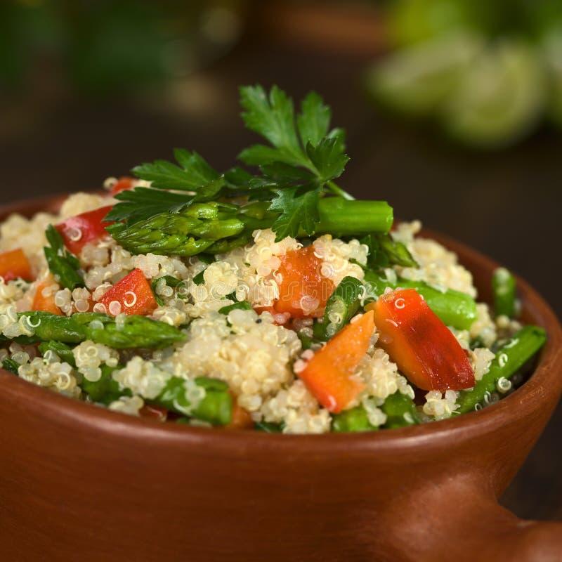 Plat végétarien de quinoa image libre de droits