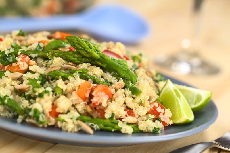 Plat végétarien de quinoa images stock