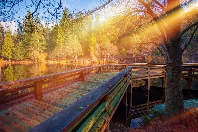 Plataforma de madeira do lago imagem de stock royalty free