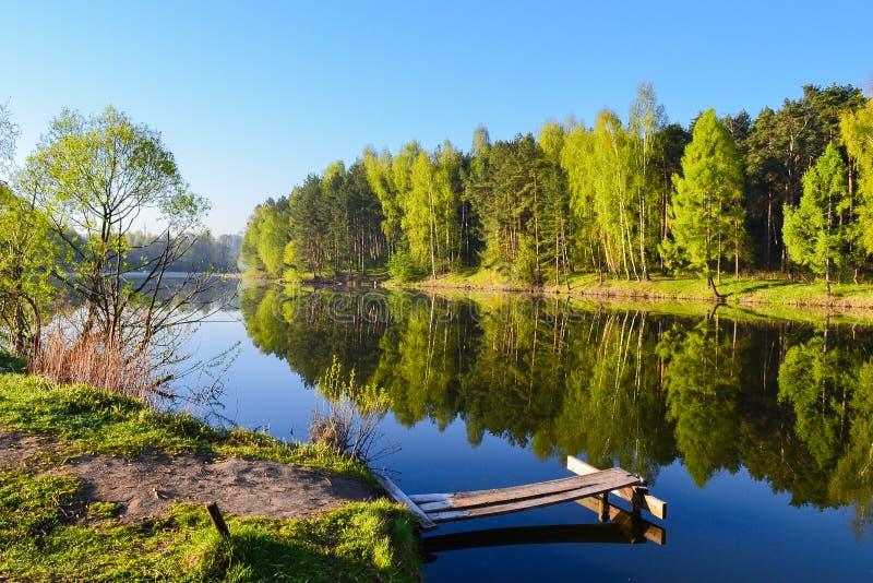 Plataforma de madeira e água calma do lago A floresta da mola e o céu azul são refletidos na água fotos de stock royalty free