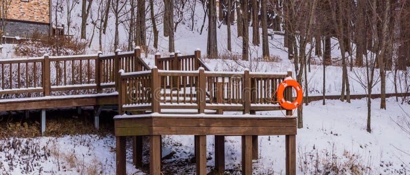Plataforma de madeira em uma área arborizada coberta na neve fotografia de stock