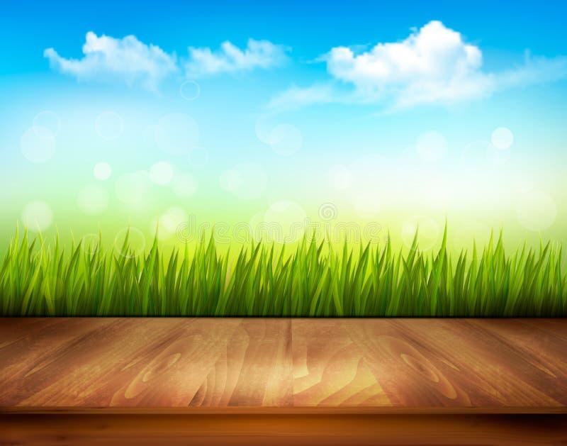 Plataforma de madeira na frente da grama verde e do céu azul ilustração stock