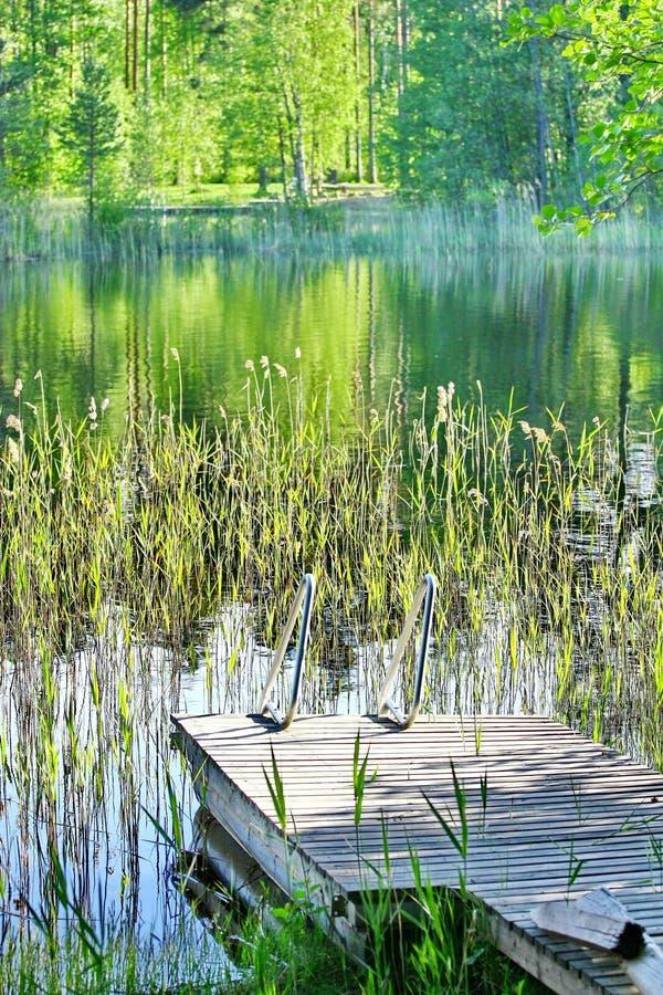Plataforma de madeira pelo lado de um lago com florestas imagem de stock