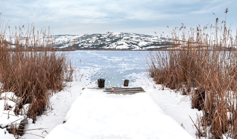 Plataforma do lago através do junco fotografia de stock