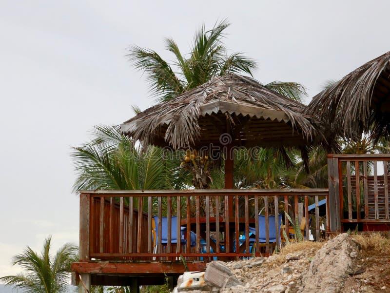 Plataforma tropical com guarda-chuvas da palma foto de stock