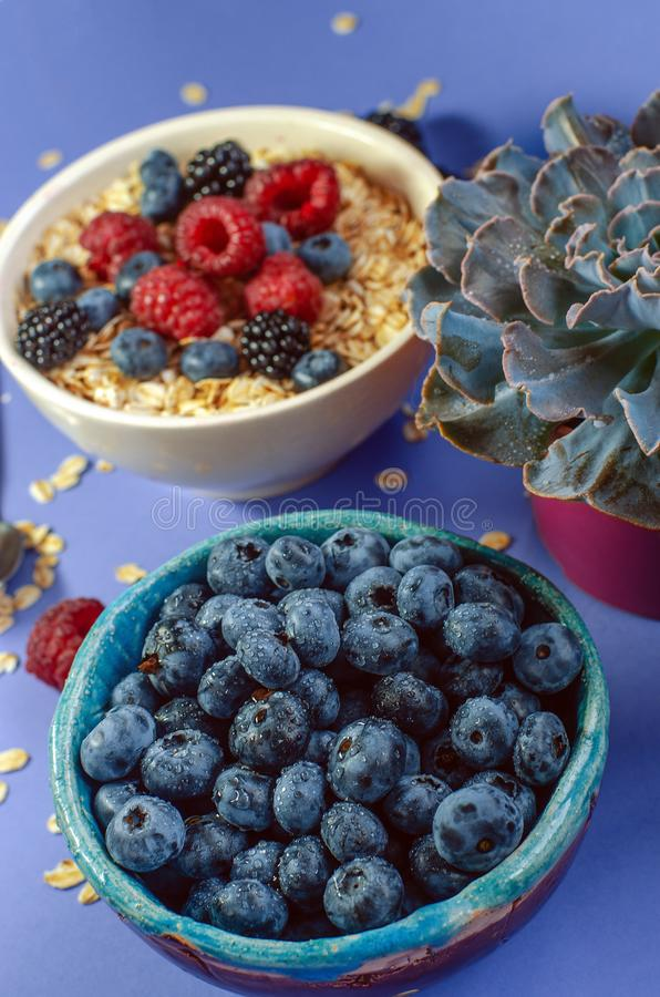 Plate with blueberries and plate with oatmeal strewn with different berries on a blue background. Summer harvest royalty free stock images
